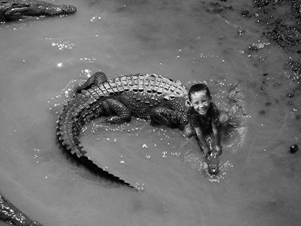 Child playing with crocodile