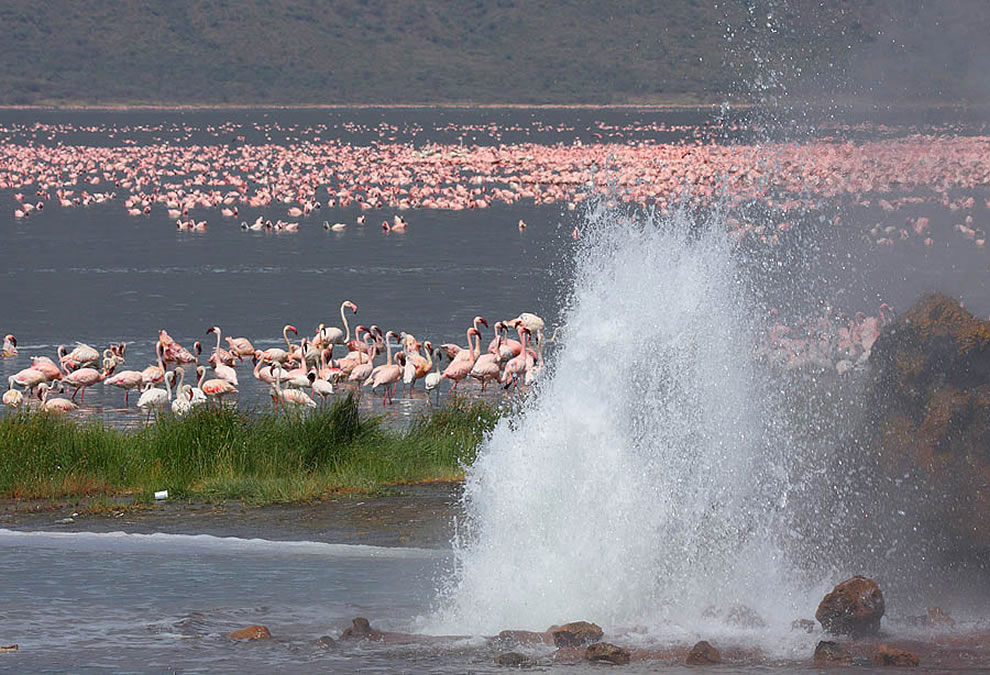 Kenya Lake System in the Great Rift Valley