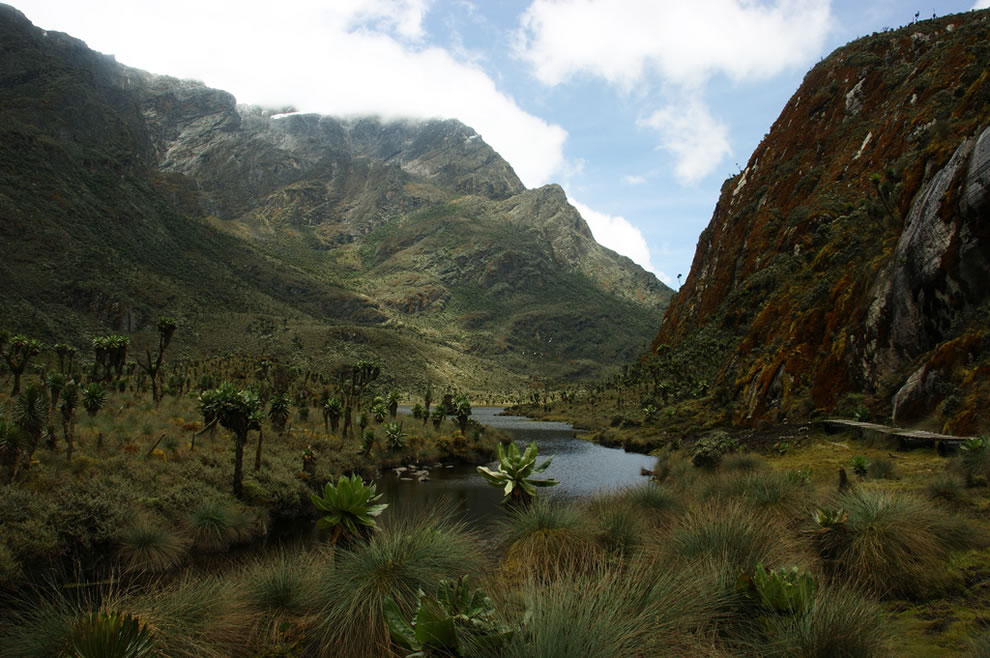 UNESCO Natural World Heritage Site in Africa, Rwenzori Mountains National Park