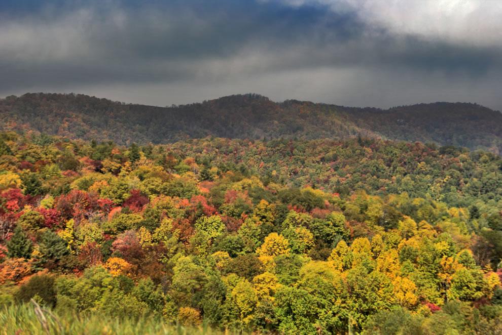Autumn escape in North Carolina Smoky Mountains, GSMNP