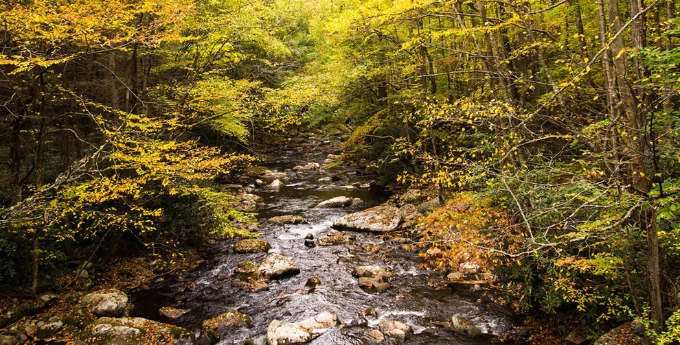 Autumn on the Little River near Tremont in the Great Smoky Mountains National Park