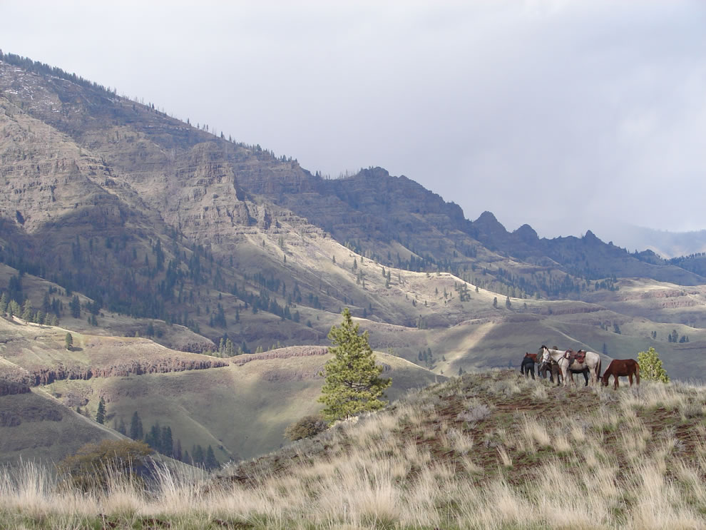 Hells Canyon Wilderness Wallowa-Whitman National Forest