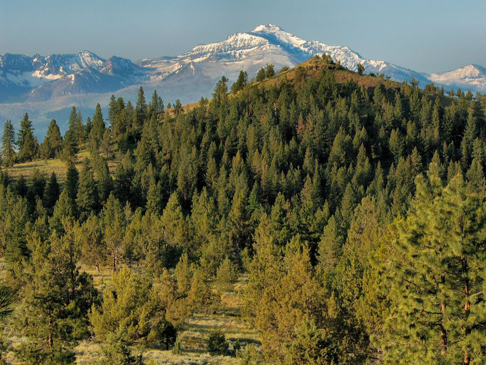 Malheur National Forest, Strawberry Peak