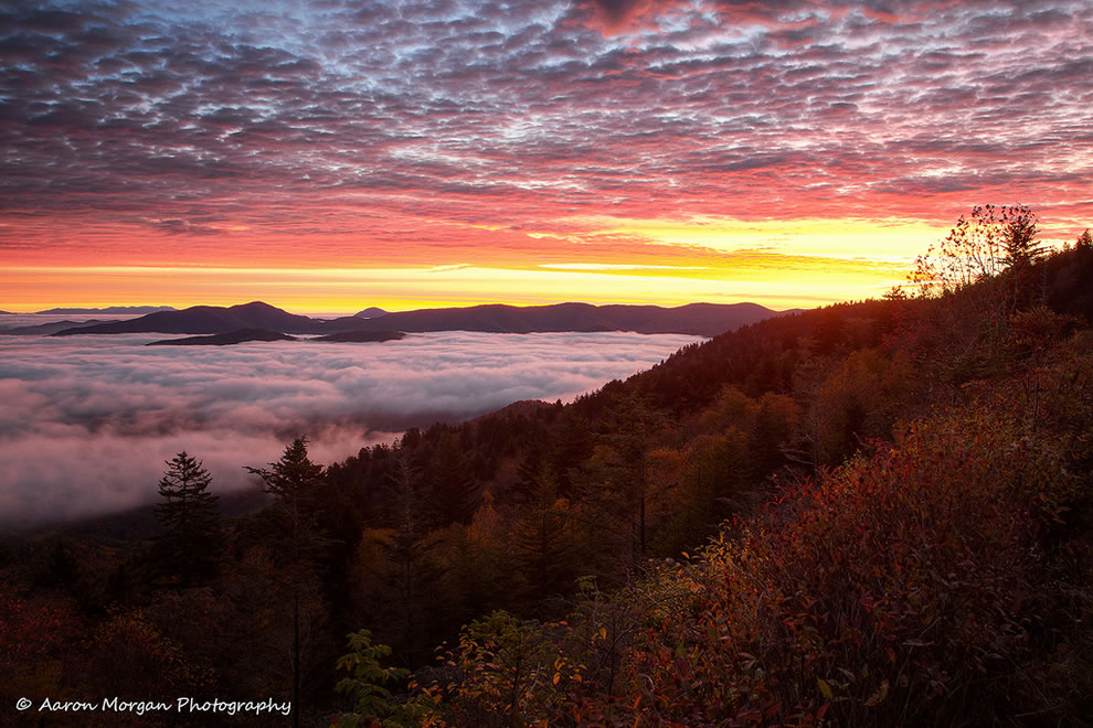 Pause for the Sublime in the Great Smoky Mountains