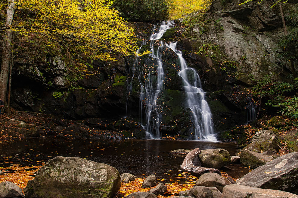 Spruce Flat Falls, Treemont Area, Great Smoky Mountains National Park