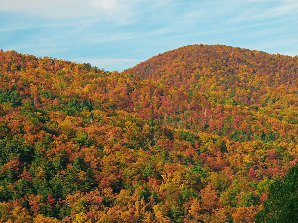 View from Maloney Overlook on Little River Road, Great Smoky Mountains National Park