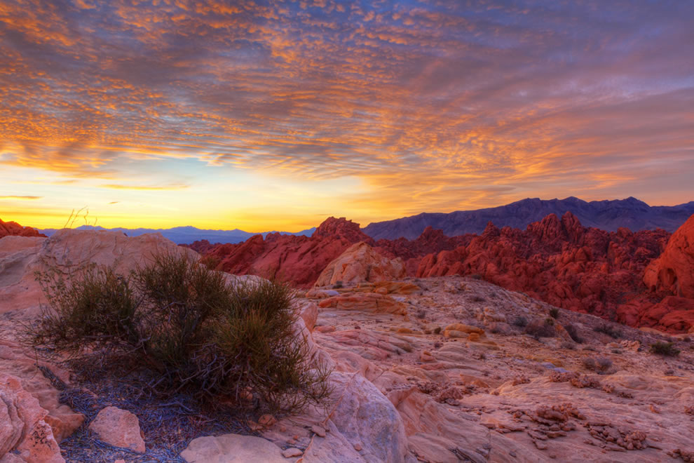 Morning Radiance at Valley Of Fire State Park, Overton Nevada