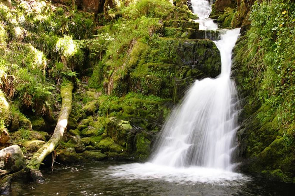 O'Sullivans Cascade in Killarney National Park