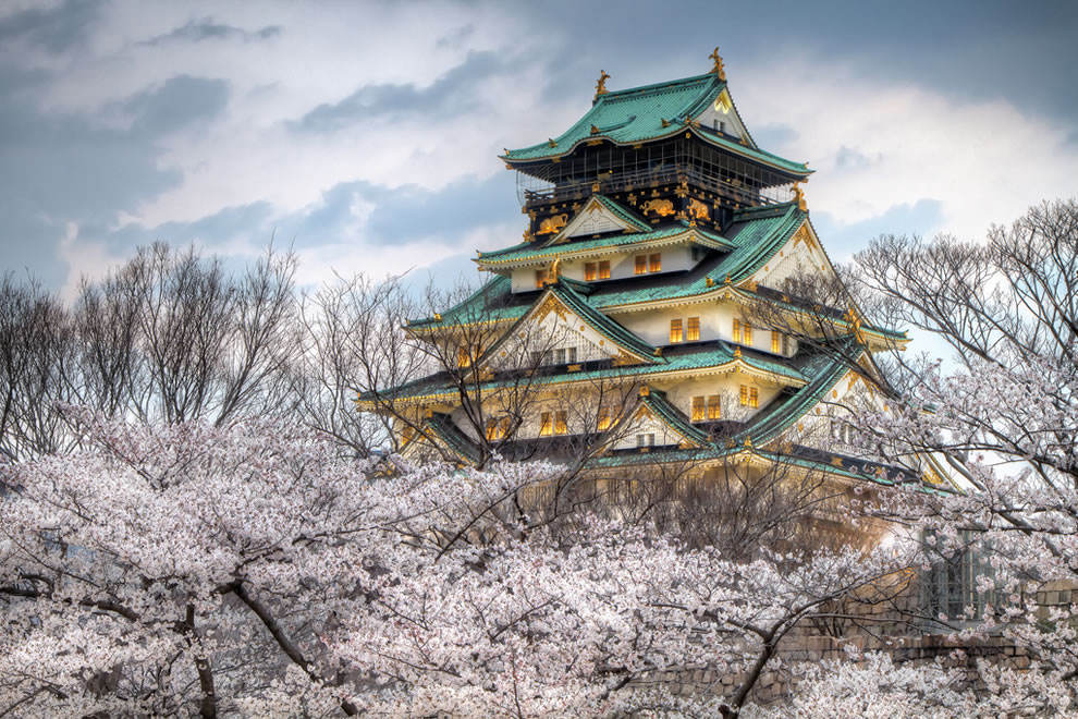 Osaka Castle Park springtime
