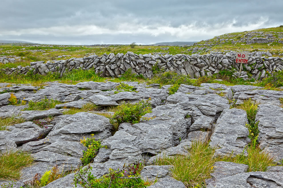 The Burren, one of the largest karst landscapes in Europe
