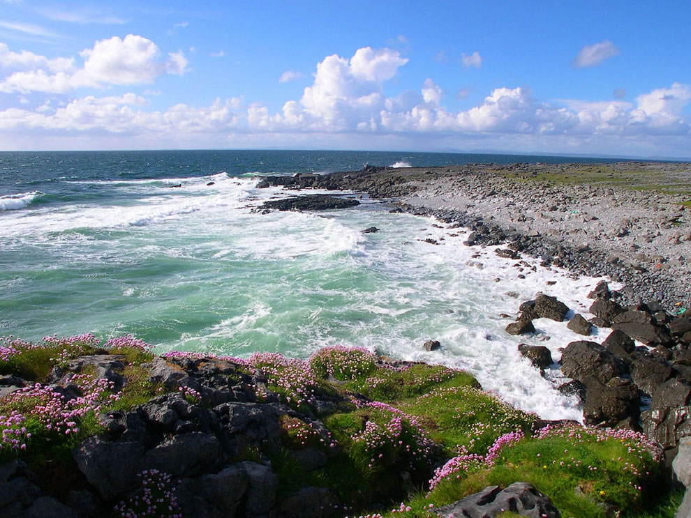 The coast from Burren National Park