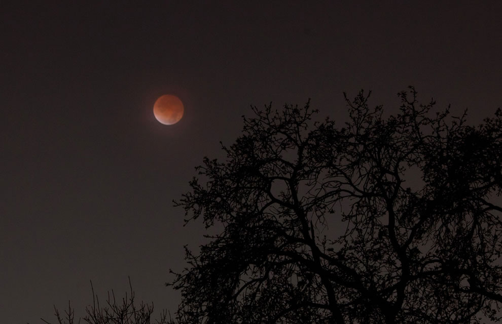 Total eclipse of the moon, this blood moon occurred in 2011