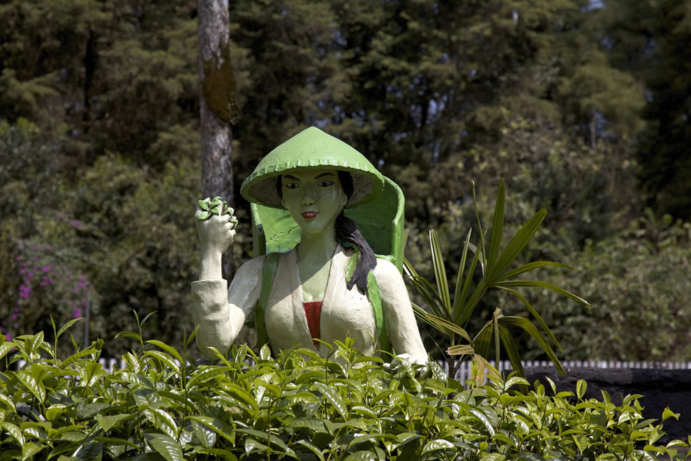 Malabar Tea Estate, statue at the entrance of the tea factory in Indonesia