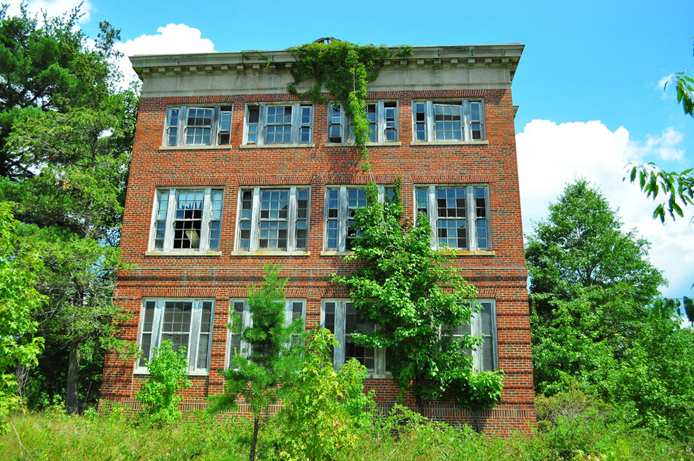 Overgrown and abandoned Forest Haven building