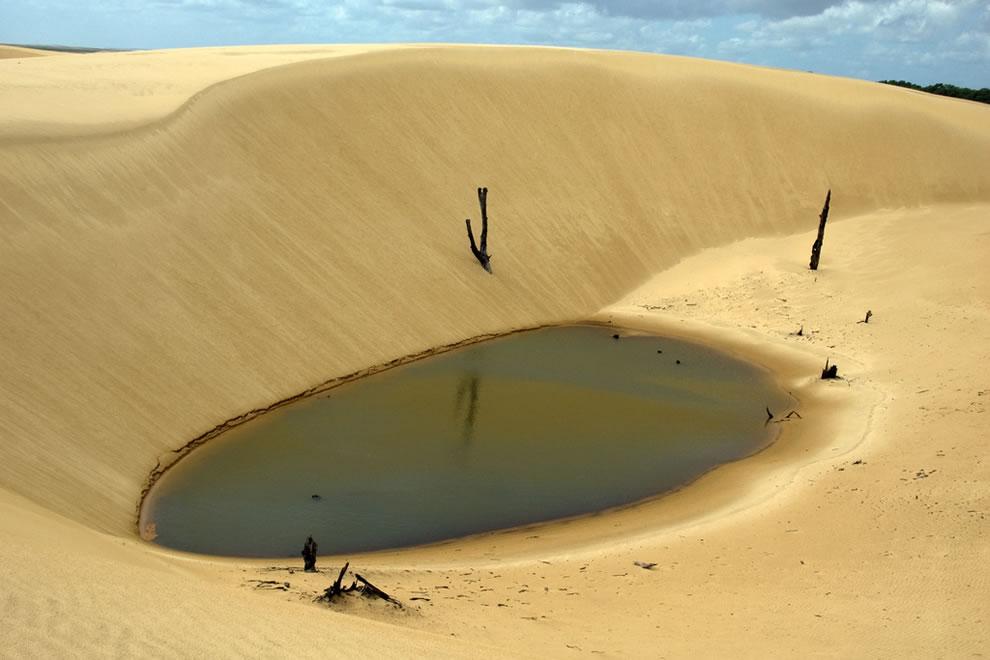 Curves and pool in the desert at Lençois Maranhenses