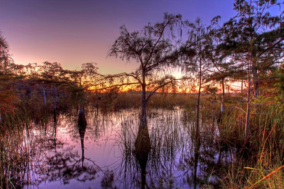 Cypress sunset at Everglades National Park