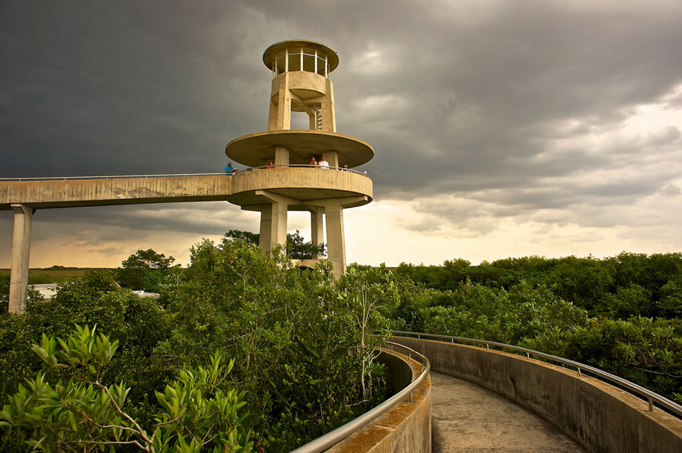 Shark Valley Lookout Tower