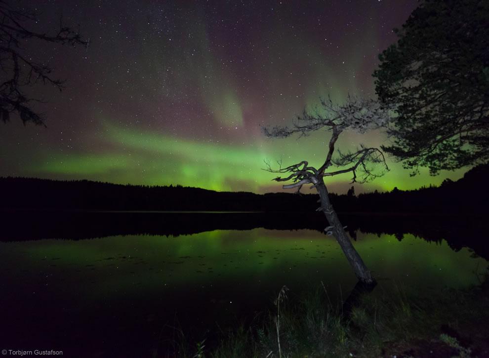 The Aurora Pond