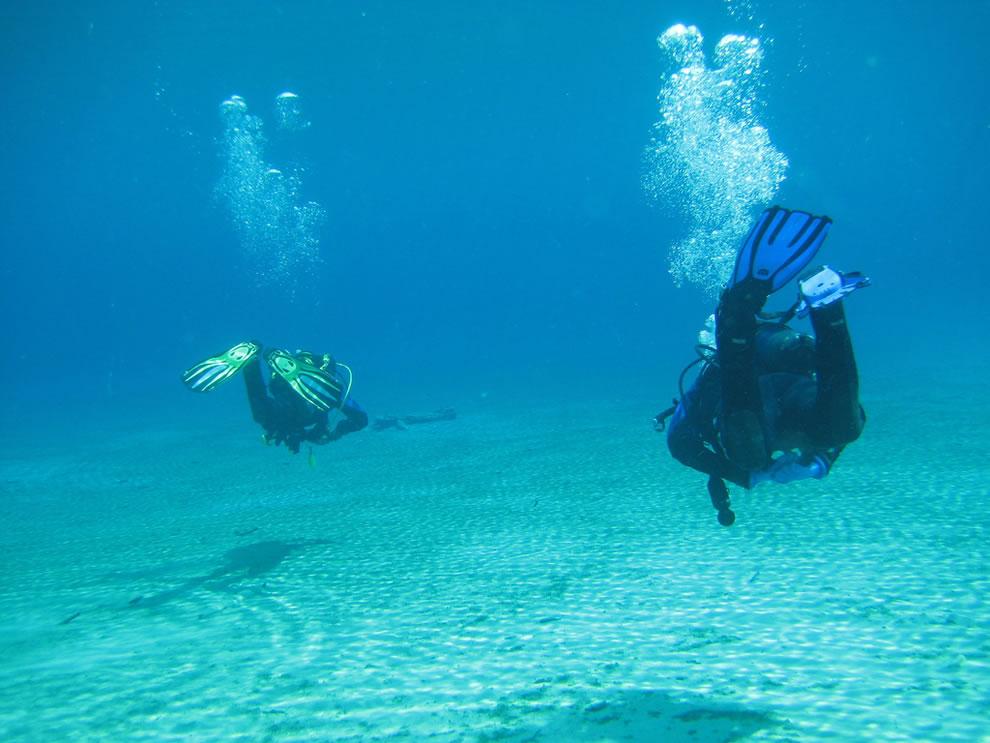 Green Lake divers