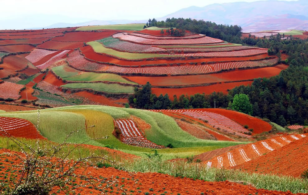 Beautiful red landscape of the Dongchuan District