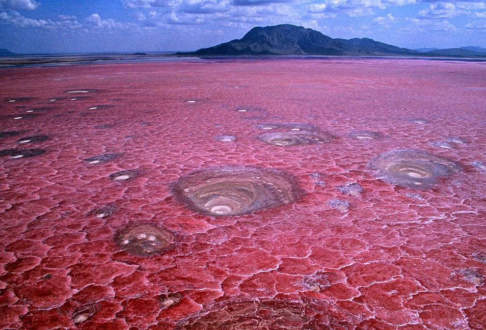 Pink Lake Lake Natron