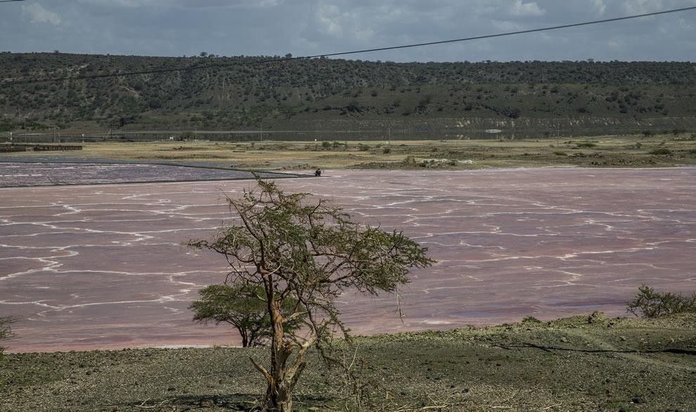 Pink Lake Magadi in the Kenyan Rift Valley