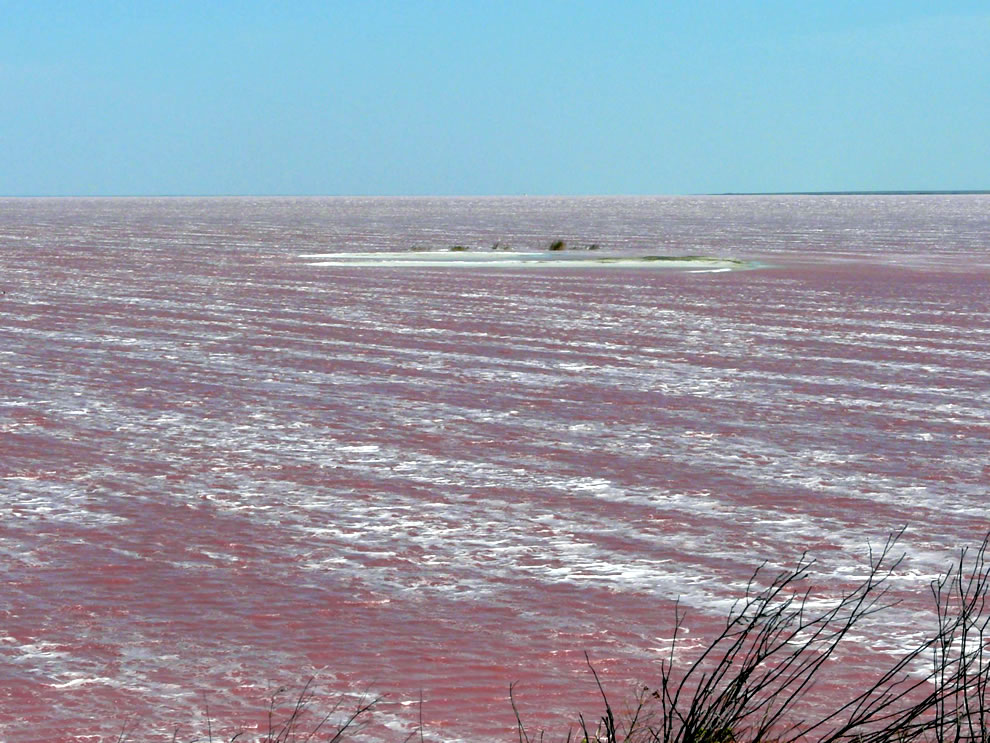 Pink Lake Sivash