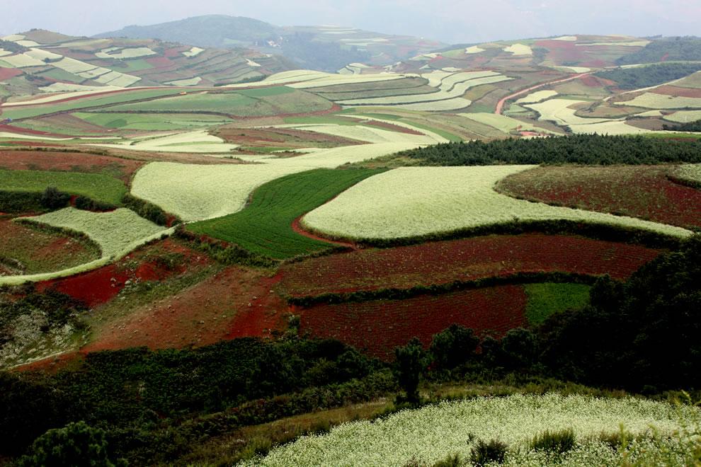 Red earth at Hongtudi