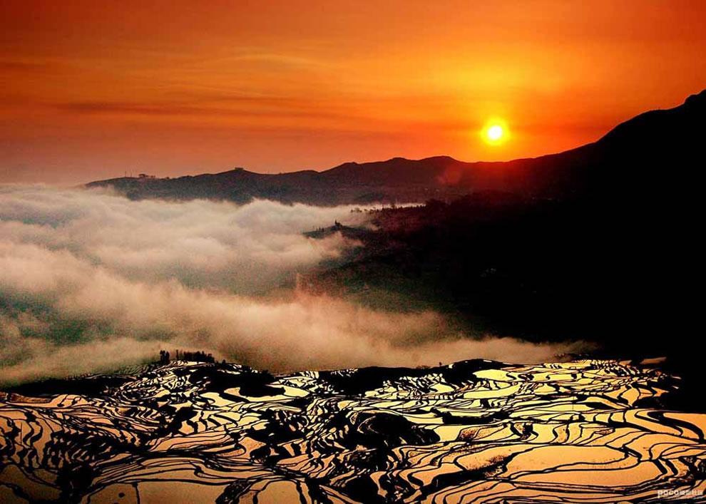 Terraced Rice Field in Jingkou Village