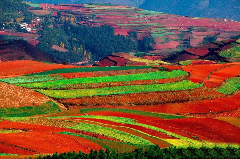 beautiful red land in china