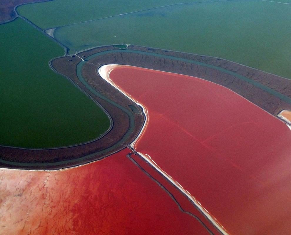 pink phenomenon by Dunaliella salina algae San Francisco Bay