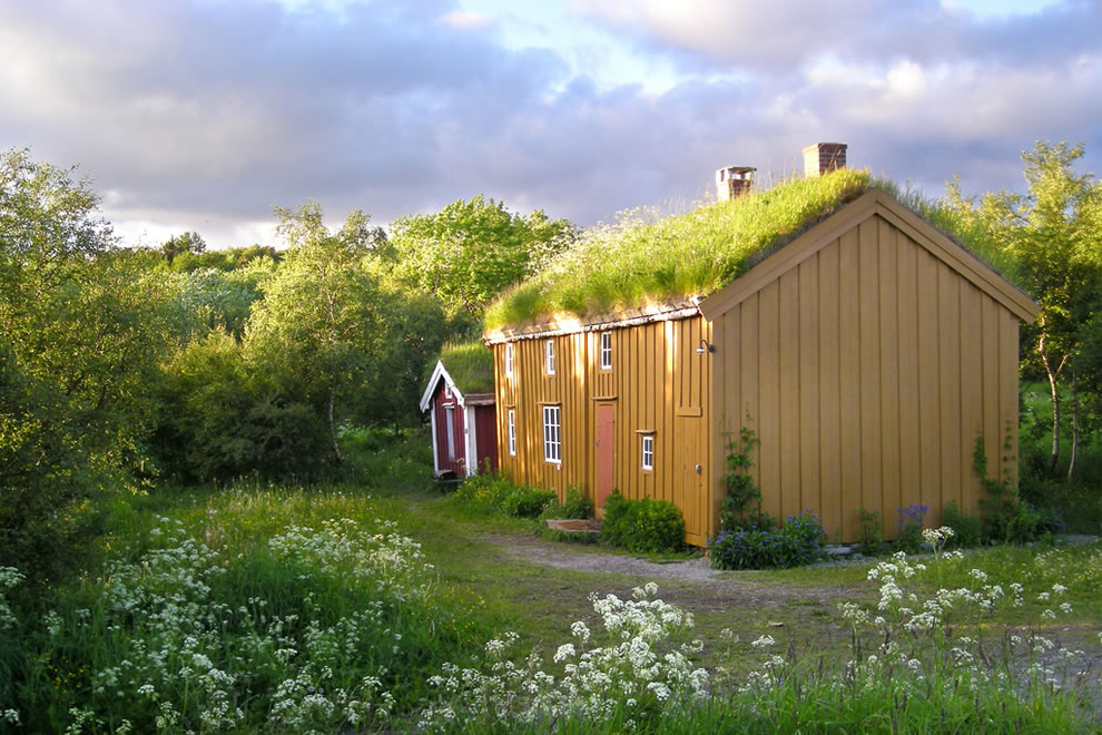 House with a grass roof in Norway