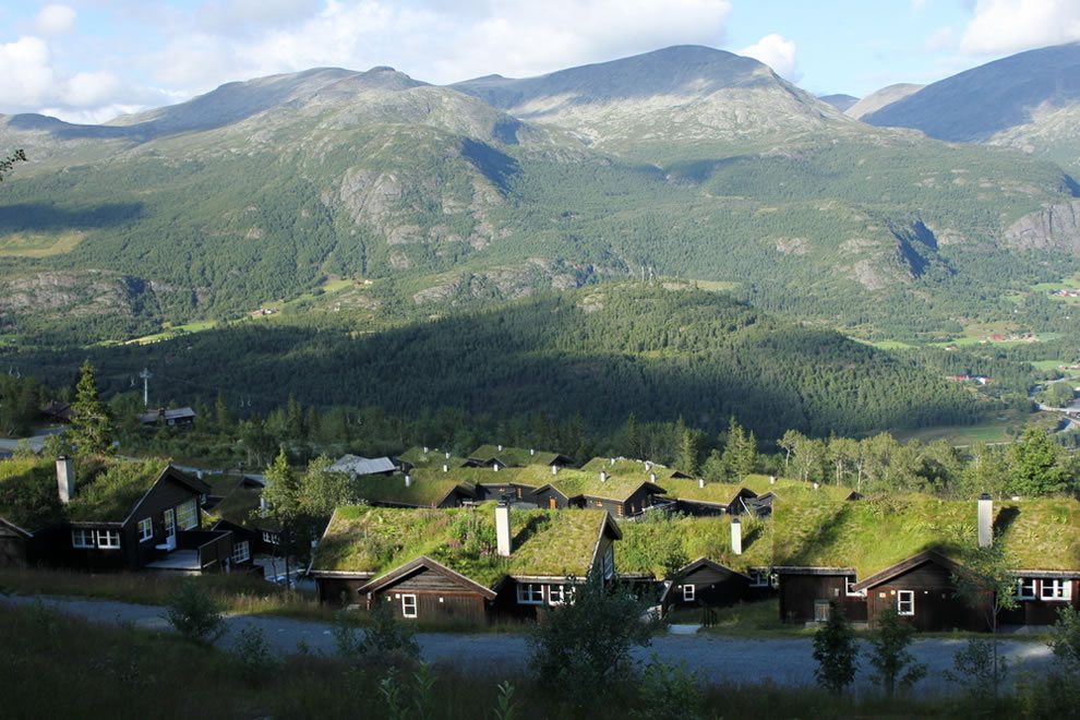 Norway sod roofs