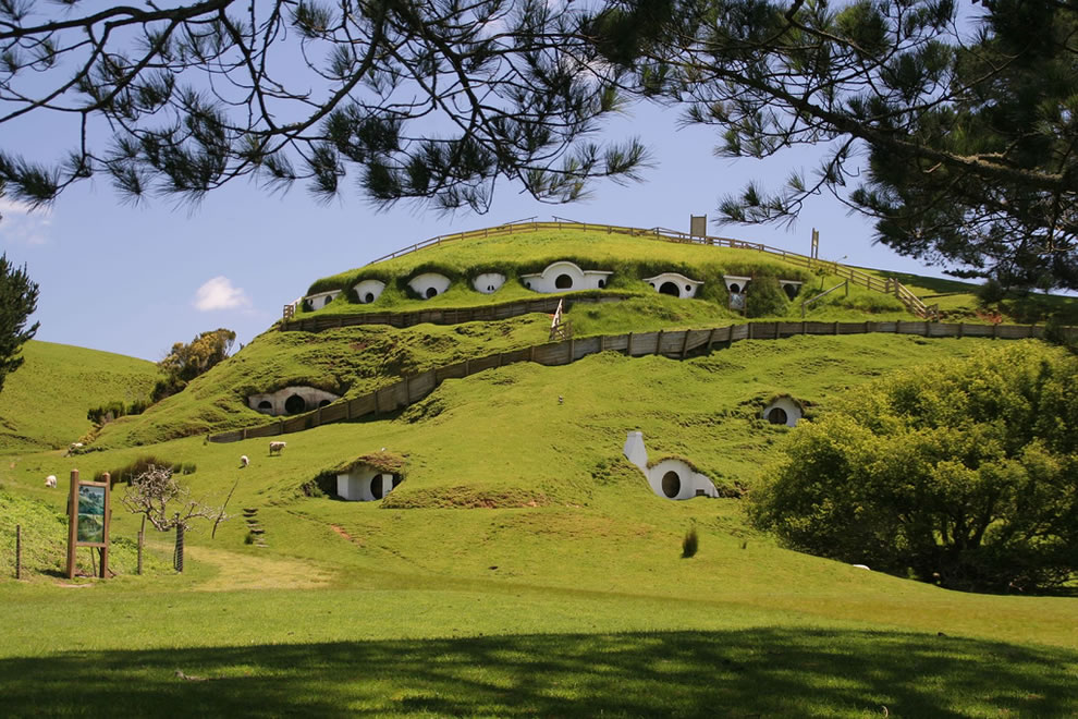 Sheep and the Hobbit's Shire in New Zealand