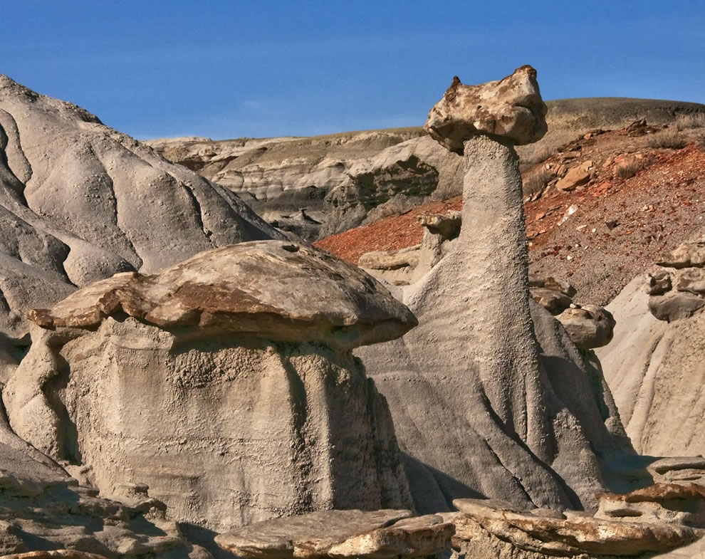 The Sphinx mushroom rock at Bisti